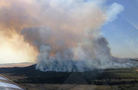 Mais de 130 incêndios foram registrados em todo o Estado de Nova Gales do Sul, o mais populoso do país