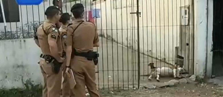 Policiais tiveram dificuldade em acalmar o animal, que acabou sendo morto