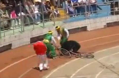 Treinadores tentam apartar a briga entre um urso e um macaco em Xangai