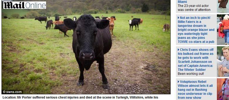 Porter morreu no local após ser atingido por cerca de 30 vacas. Seu irmão teve um pulmão perfurado e costelas quebradas e foi hospitalizado