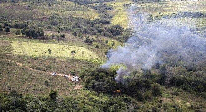 Cultivo ilegal de maconha na fronteira entre Brasil e Paraguai
