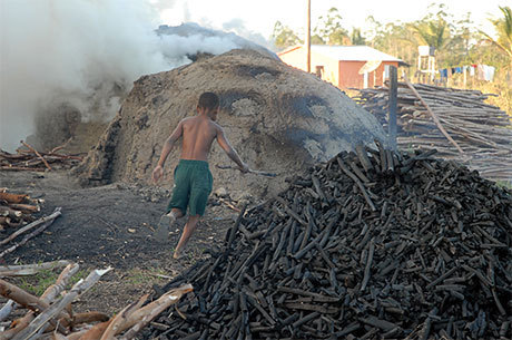 Nordeste concentra 1,3 milhão de crianças que trabalham no Brasil