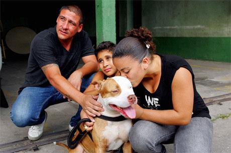 A família se emocionou ao reencontrar o cão após 6 meses