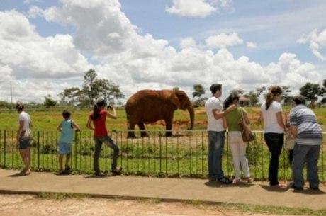 As inscrições estão abertas e podem ser realizadas na administração do zoológico