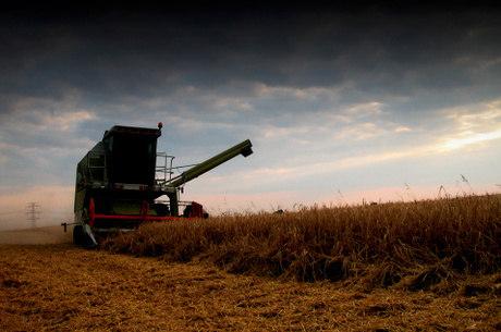Na comparação trimestral de 2012, a agroindústria recuou 6%