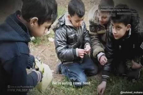 """No vídeo, crianças palestinas aparecem se alimentando de grama: """"Nós estamos comendo comida de vaca"""""""