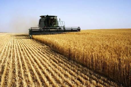 Agronegócio puxou resultado positivo do PIB