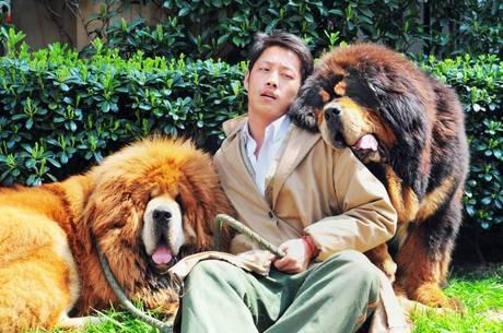 Comprador do cão caríssimo foi um rico promotor imobiliário