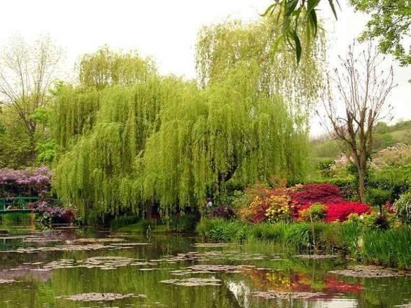 As mais famosas pinturas de Claude Monet foram inspiradas em seu jardim. O mestre impressionista cultivava flores em sua casa no noroeste de Paris. Saiba mais a seguir