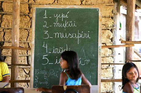 Estima-se que 20% das crianças com deficiência frequentam a escola
