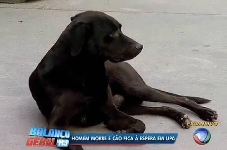 O cachorro ganhou fama na região pela fidelidade ao dono