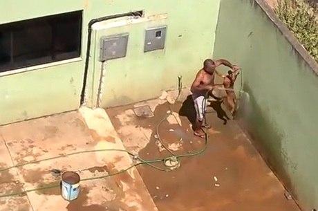 Polícia Civil informou que suspeito de agredir cachorro foi preso