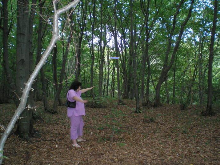 Eles dizem ver criaturas no meio do mato e vultos. E apontam o tamanho e a localização. Muita gente diz sentir náusea e desorientação só de caminhar no meio do mato.