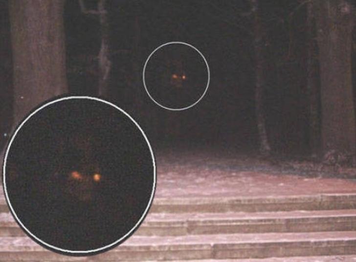 Os espíritos desses trabalhadores também rondam a floresta, dizem visitantes