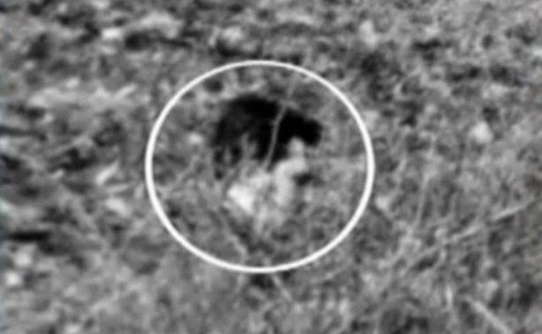 Existe um farto arquivo com fotos de supostos fantasmas. As imagens são compartilhadas nas redes sociais. Algumas, como a imagem acima, causam sustos e intrigam muita gente