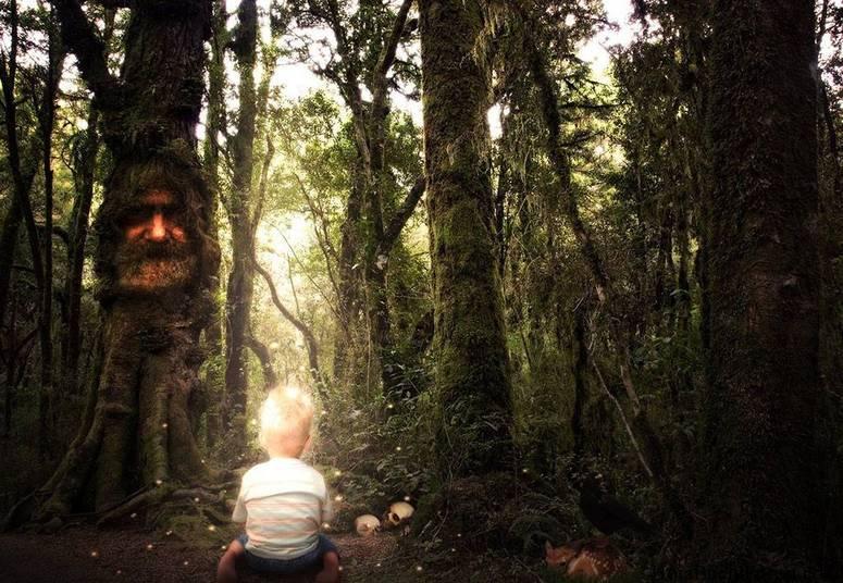 Parece estranho? Outras pessoas também foram vistas pela última vez na floresta. Há casos de pequenos grupos e de uma criança de 5 anos, que nunca mais foi vista