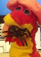 Comedora de aranha