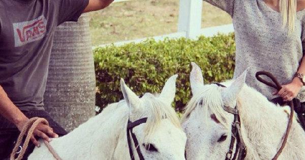 Vestido De Príncipe E A Cavalo Mineiro Pede Namorada Em