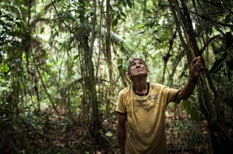 O ribeirinho Chico Catitu se aliou aos munduruku para a abertura da picada