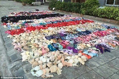 Cerca de 2 mil peças íntimas foram roubadas das vizinhas