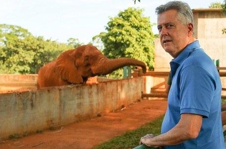 Governador do DF aproveitou o final de semana para visitar elefante no Zoológico de Brasília
