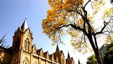 Faculdade Santa Casa de SP oferece bolsas de estudos integrais