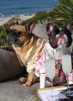 Um final de semana na praia com meu brother