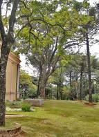 Localizado no Cruzeiro, o parque Amílcar Viana Martins tem um mirante, brinquedos para crianças e área de convivência. Também abriga o primeiro reservatório de água de BH, inaugurado em 1897<br>