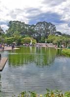 O Parque das Mangabeiras tem a maior área verde de Belo Horizonte. É ideal para quem curte fazer trilha em meio à mata nativa e se deparar com animais silvestres. O parque possui quadras poliesportivas, dezenas de brinquedos, quiosques e restaurantes, além da praça de serviços