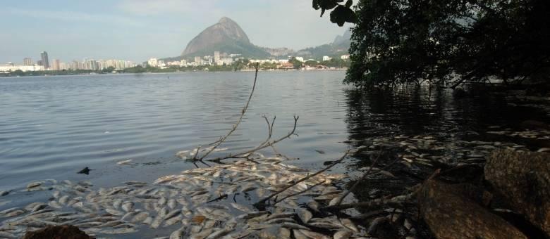 Em abril passado, mais de 50 toneladas de peixes mortos foram recolhidas na Lagoa, zona sul do Rio de Janeiro