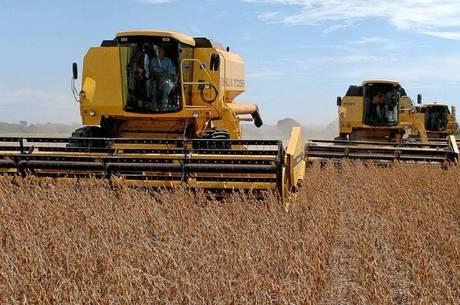 Safra nacional de grãos deve bater recorde em 2020