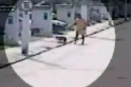 Também em Teixeira de Freitas, um policial militar matou um cão buldogue francês da vizinha a tiros