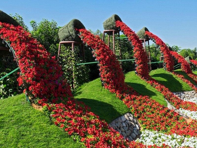 Maior jardim de flores do mundo é criado no deserto - Fotos - R7 Viagens