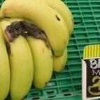 Este cacho de bananas estava premiado com um rato morto em um supermercado