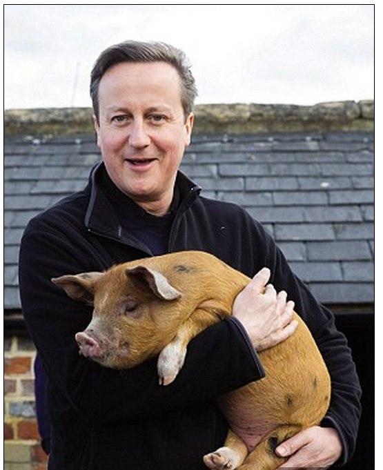 Governo britânico tenta ignorar alegações de que primeiro-ministro teria feito sexo com porco morto