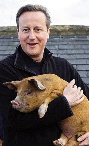 Autores afirmam que a cabeça de porco estava no colo de um membro do Piers Gaveston Society
