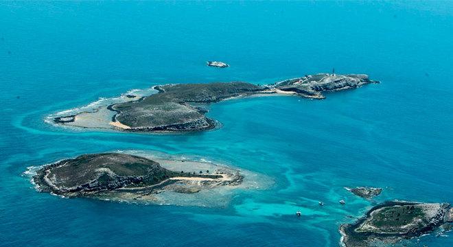 Vestígios de óleo não impactaram na vida marinha e na flora local