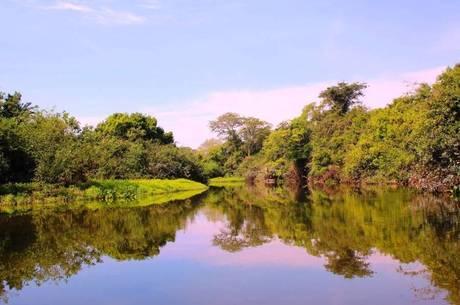 Pantanal foi o bioma que apresentou as menores perdas