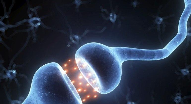 Mapeamento de proteínas mostram comprometimento de células nervosas