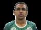 <b>Tiaguinho</b><br><b>Posição: </b>Atacante<br><b>Perfil:</b>Tiago Da Rocha Vieira nasceu no Rio de Janeiro e tem 22 anos. Jogou em times como o XV de Piracicaba e o Cianorte