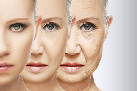 Ao investigar se as células-tronco no hipotálamo eram a chave para o envelhecimento