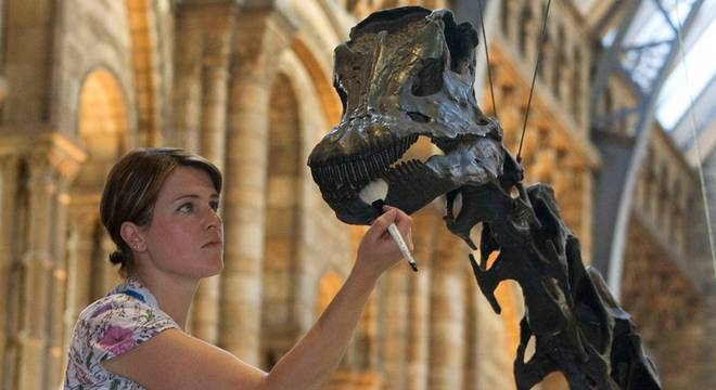 Especialista em exibições Helen Walker limpa o dinossauro Dippy; esqueleto será levado para turnê nacional