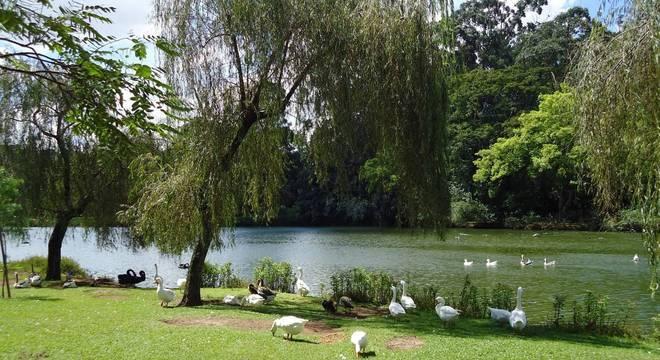 Parque Ibirapuera está em edital para a concessão de 35 anos