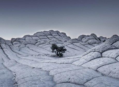 Descubra fotos impressionantes feitas ao redor do mundo