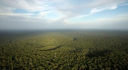 Projeto prevê nova hidrelétrica na área da floresta