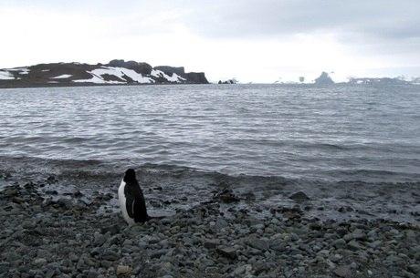 Estações na Antártida acompanham as mudanças climáticas