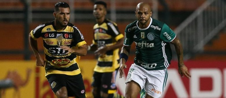Felipe Melo, volante do Palmeiras, é um dos jogadores pendurados das semifinais do Campeonato Paulista