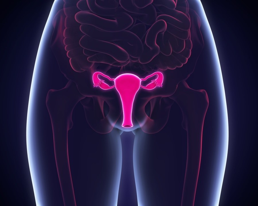 sintomas cancer intestino portugues