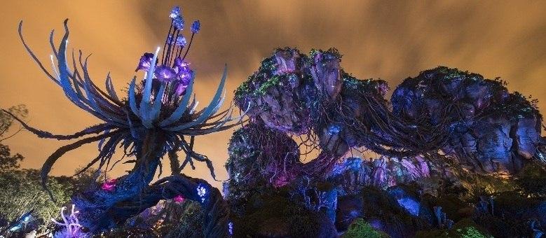 Pandora durante a noite, com flores fosforescentes, é uma das dicas imperdíveis para quem vai à Disney