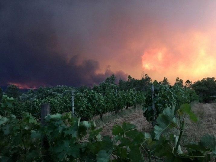 O fogo se alastrou por uma área montanhosa, 200 km a sudeste de Lisboa, em meio a uma intensa onda de calor e ventos fortes